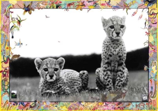 Peter Beard, Orphaned Cheetah Cubs, Mweiga, near Nyeri, Kenya, March 1968, 1968